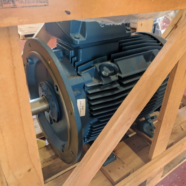 Electric Motor - 45kw